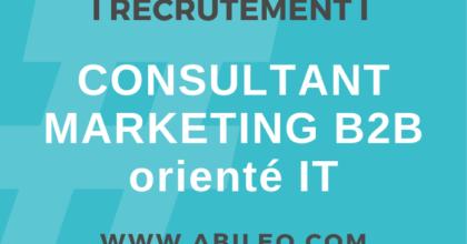 Consultant Marketing IT 700 X 400