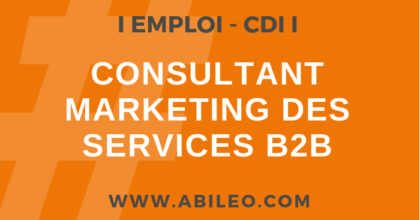 Consultant marketing des services B2B