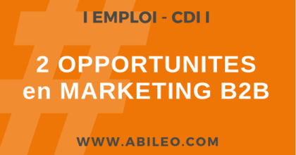 Emploi marketing B2B